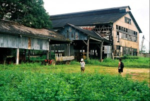 fordlandia-today